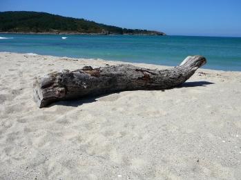 Playa A Barra